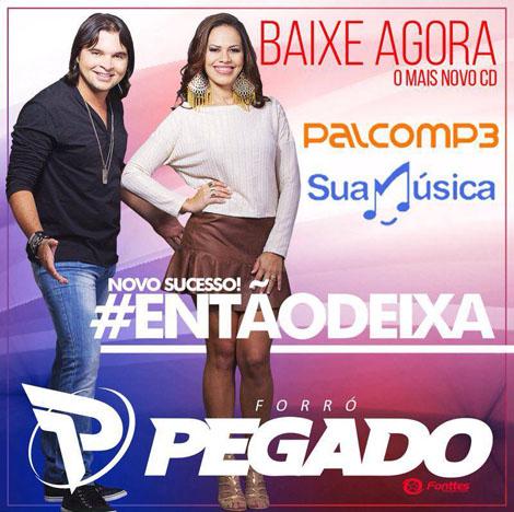 MP3 MAGNIFICOS PALCO BAIXAR BANDA